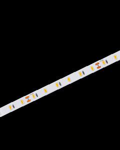 LED strip | 24V | 6500K | 10W | 60 LED/m | IP20